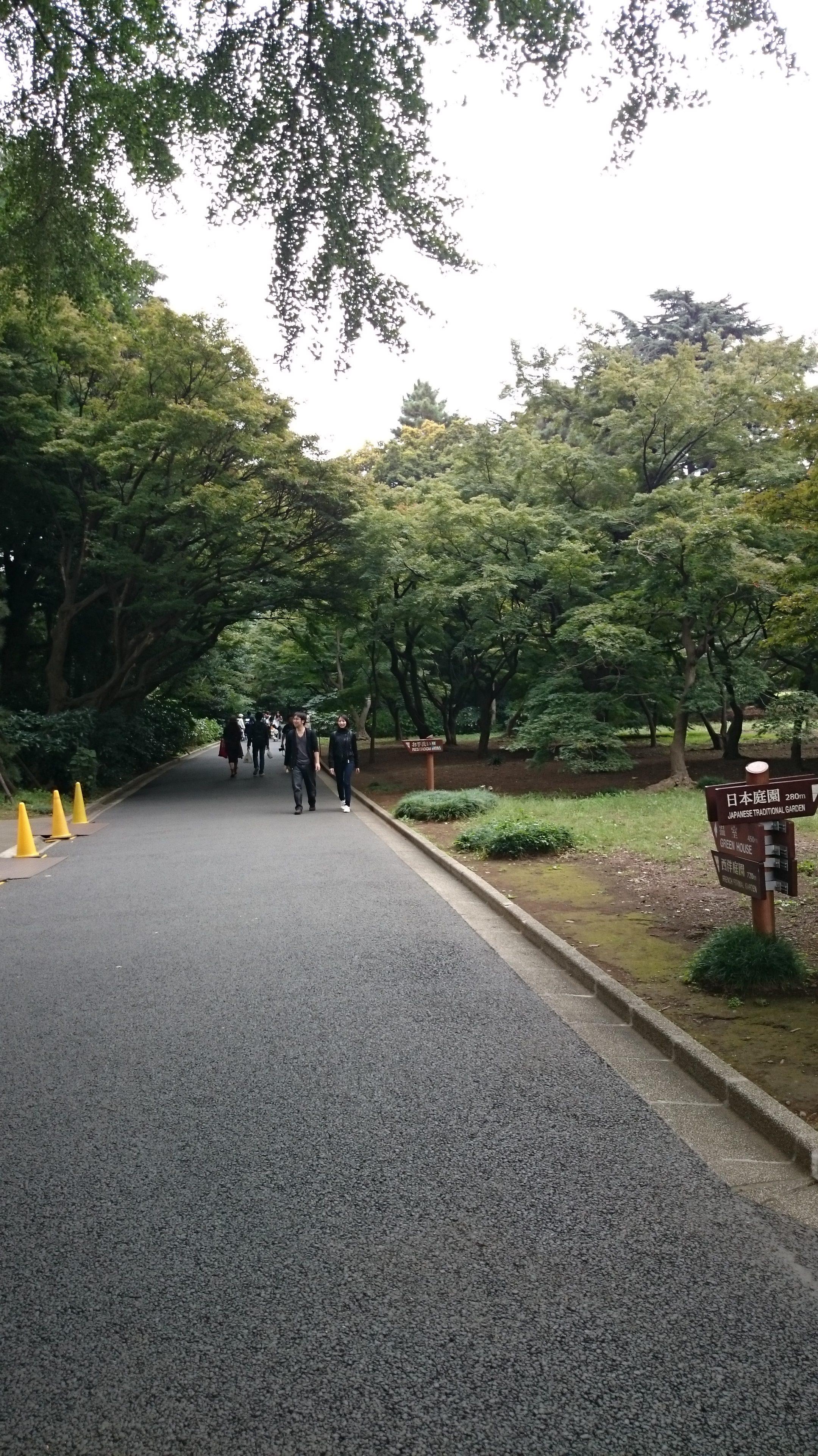 Parc de Shinjuku , Tokyo