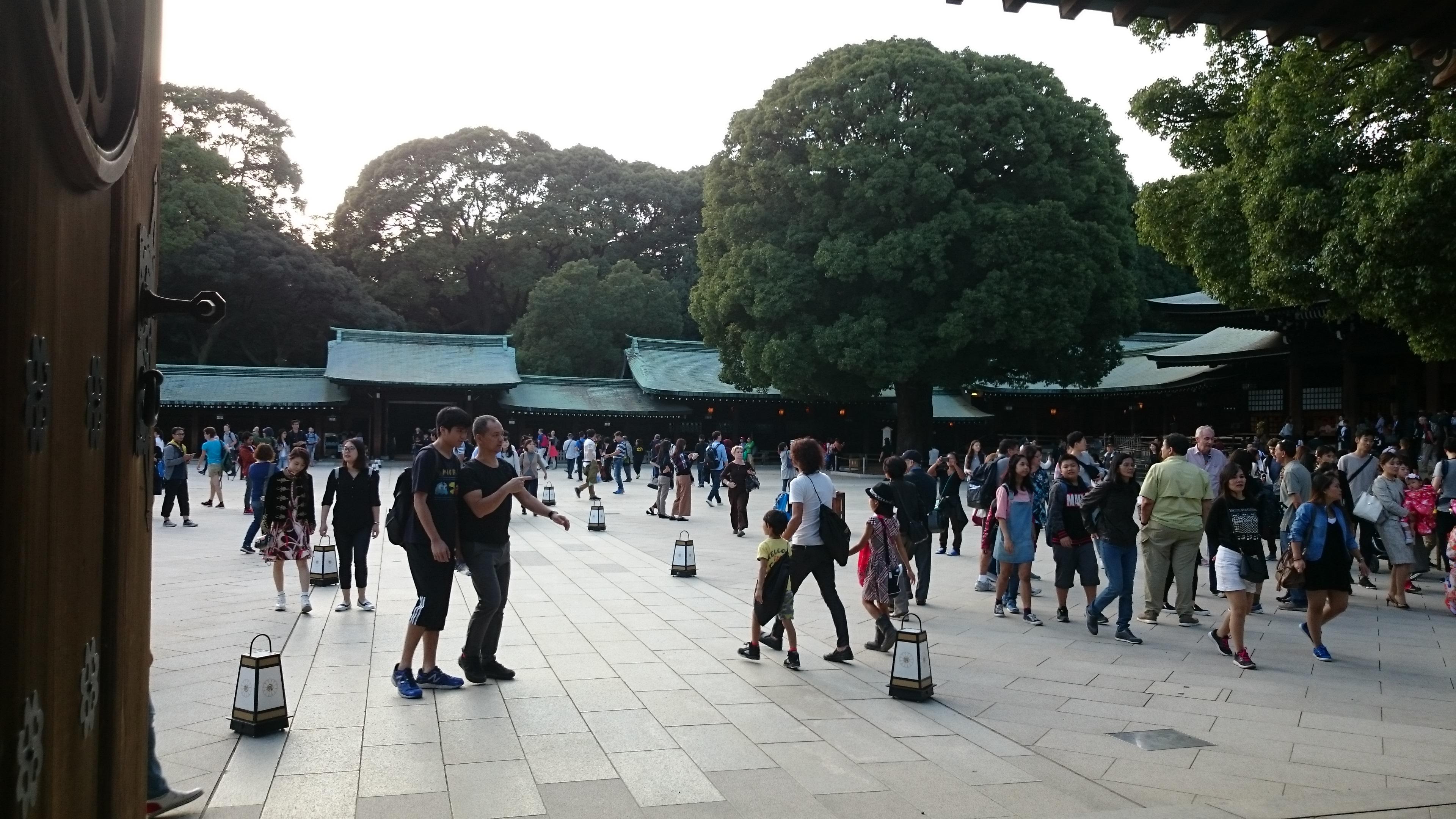 temple, parc sanctuaire meiji-jingu, Tokyo, Japon