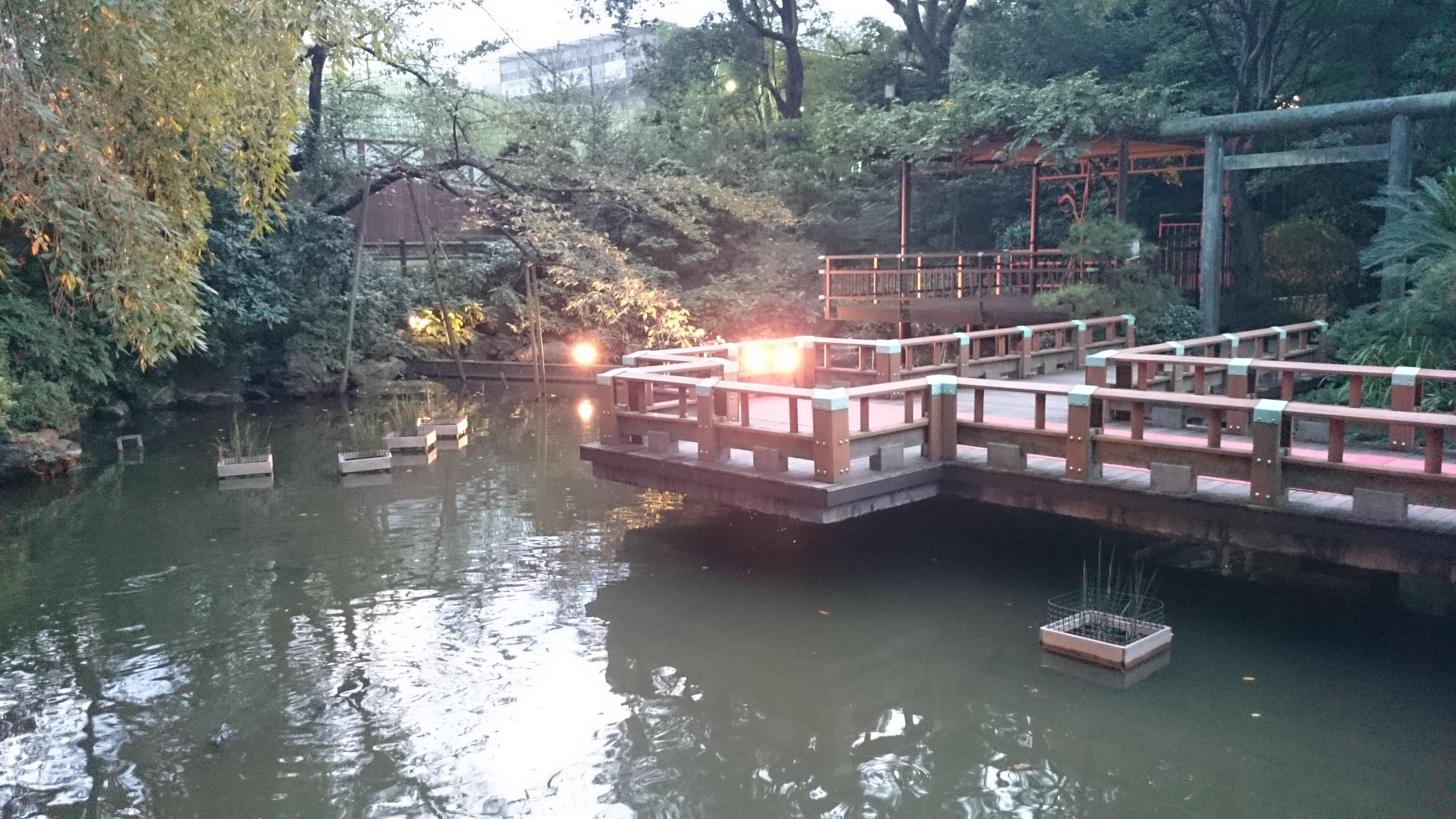 temple harajuku, Tokyo, Japon